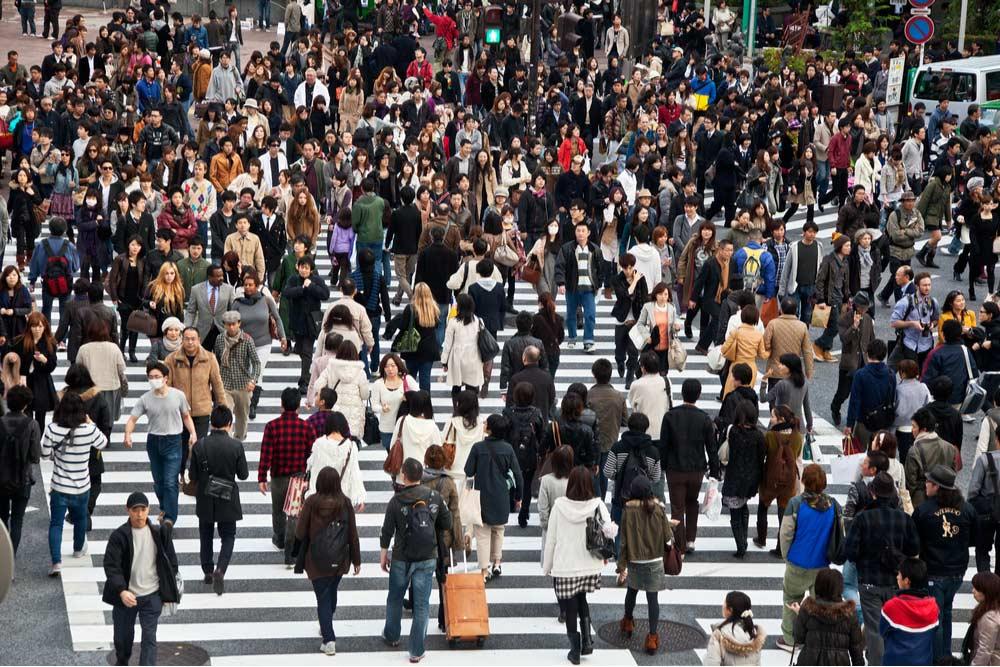 Japanese market analysis